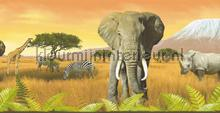 Savanna wildlife rand tapet AS Creation Only Borders 10 690111