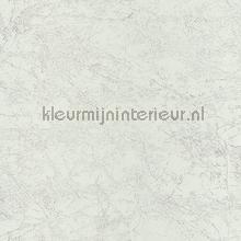 OXYDE LIERRE BLANC IRISE tapet Casadeco Oxyde OXY29120136