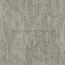 OXYDE WOOD TAUPE IRISE behang Casadeco Modern Abstract