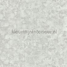 OXYDE ECORCES BLANC IRISE tapet Casadeco Oxyde OXY29160117