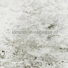 Vulcain papier peint Elitis Oxydes rm-615-01