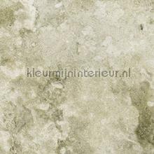 Maria papier peint Elitis Oxydes rm-616-02