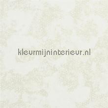 PALASINI behang Designers Guild Palasini PDG64701