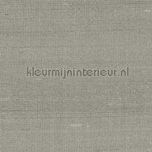 latus imitatie zijde carta da parati Arte Paleo 50510