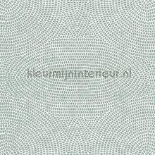 strata papel pintado Arte Paleo 50570