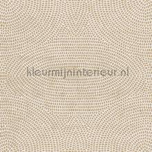 strata papel pintado Arte Paleo 50571