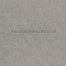 strata papel pintado Arte Paleo 50572