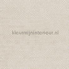 strata papel pintado Arte Paleo 50573