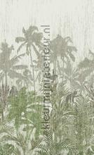 Palm trees photomural BN Wallcoverings Panthera 200349