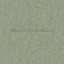 88033 tapet BN Wallcoverings Panthera 220116