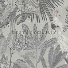 Toucan jungle tapet BN Wallcoverings Panthera 220120