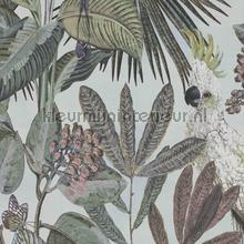 Toucan jungle tapet BN Wallcoverings Panthera 220122