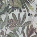 Toucan jungle behang Top 15 inspiratie