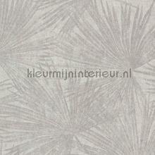 Exotic palm rythm tapet BN Wallcoverings Panthera 220130