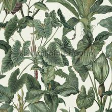 Tropische bladeren tapeten Behang Expresse weltraum