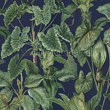 Tropische bladeren behang Behang Expresse Paradisio 6303-08