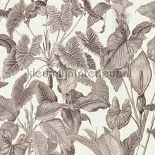 Tropische bladeren behang Behang Expresse Exotisch