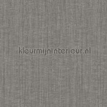 texture tapet Hookedonwalls Passenger 16803