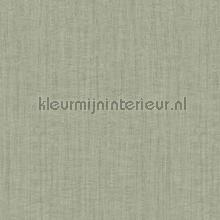 texture tapet Hookedonwalls Passenger 16807