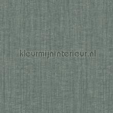 texture tapet Hookedonwalls Passenger 16808