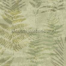 fern tapet Hookedonwalls Passenger 16862