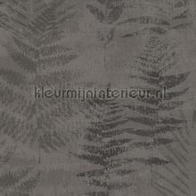 fern tapet Hookedonwalls Passenger 16863