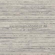 reeds tapet Hookedonwalls Passenger 16870