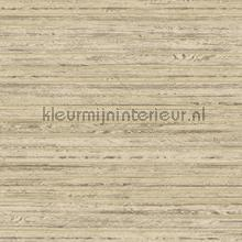 reeds tapet Hookedonwalls Passenger 16873
