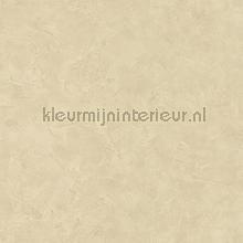 patine tapet Caselio Patine PAI100221421