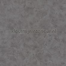 patine tapet Caselio Patine PAI100229781