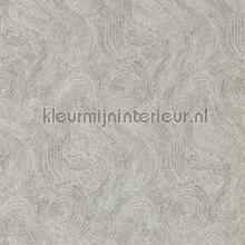 Hawksmoor greystone behang Zoffany Phaedra Wallcoverings 312596