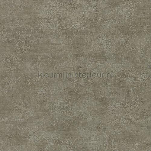 Metallo fossil tapet 312605 Phaedra Wallcoverings Zoffany