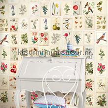PiP Botanical Paper behang fotomurales Eijffinger PiP studio wallpaper
