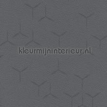 Eole 1117 papier peint Texdecor Polyform Vinacoustic PFY91021117