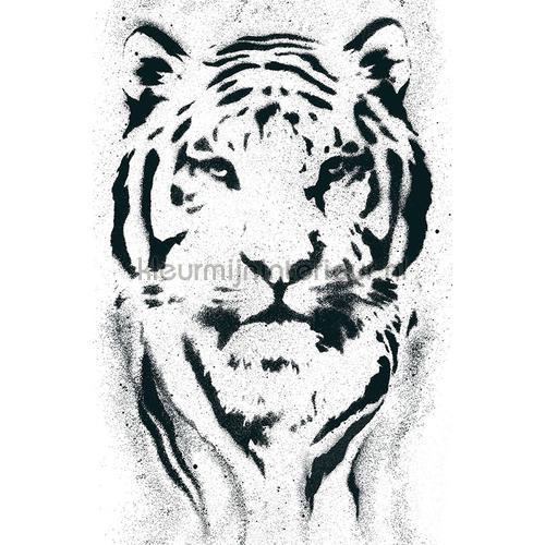 Tijger sticker decoration stickers 942351 jungle AS Creation