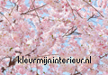 Pink Blossoms fotobehang Ideal Decor Ideal-Decor Poster 00155