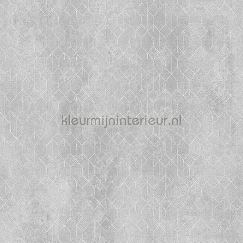 mesh tapet pri502 Prisma Khroma