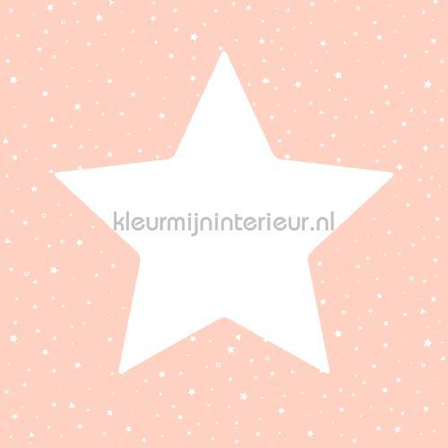 Grote sterren met twinkels behang 27101 Behang Expresse