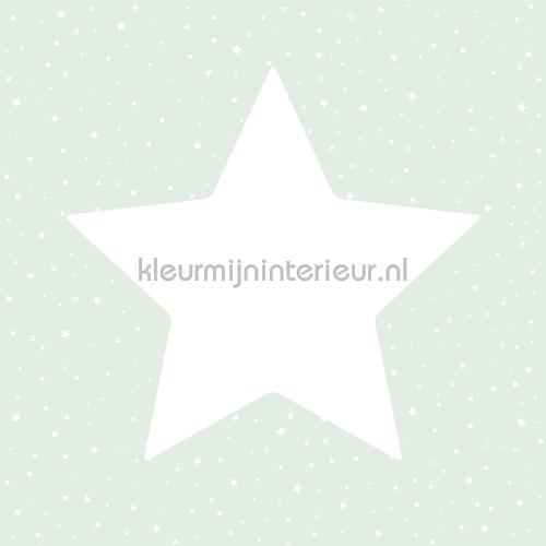 Grote sterren met twinkels mint behang 27103 Behang Expresse