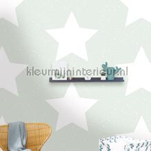 Grote sterren met twinkels mint wallcovering Behang Expresse Puck and Rose 27103