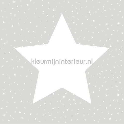 Grote sterren met twinkels grijs behang 27104 Behang Expresse