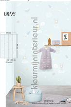 82325 wallcovering Behang Expresse Puck and Rose ink7009