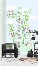 Fotobehang koala wallcovering Behang Expresse Puck and Rose ink7012