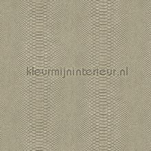 Python papel de parede Arte Python 10403