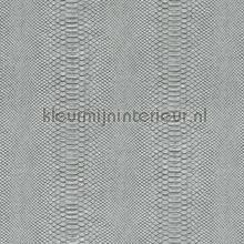 Python papel de parede Arte Python 10418