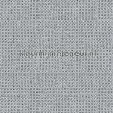 Python papel de parede Arte Python 10436