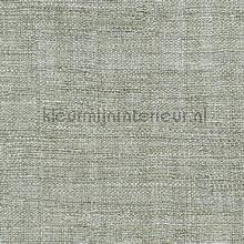 Madagascar Metal tapet Elitis Raffia and Madagascar VP-602-01