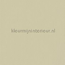 100539 papel de parede BN Walls contract Ravi 16212
