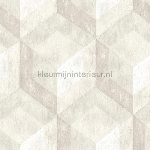 3d stacked cubics tapet FD22308 Reclaimed Dutch Wallcoverings