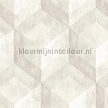 3d stacked cubics papier peint Dutch Wallcoverings Reclaimed FD22308